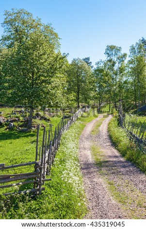 Rustic old dirt road in the countryside in summer - stock photo