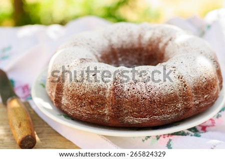 Rustic Style Bundt Cake Sprinkled with Icing Sugar, copy space for your text - stock photo