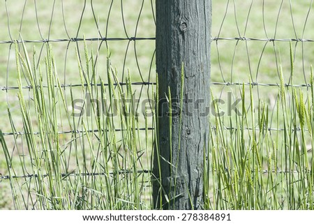 Rustic, wooden, country fence with green grass hay and field background, shallow DOF - stock photo