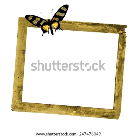 Rustic wooden frame with colorful butterfly - stock photo