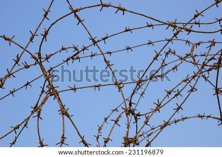 Rusty barbed wire against blue sky. War and imprisonment concepts.  - stock photo