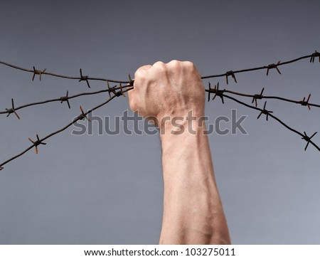 Rusty barbed wire in a strong man's hand - stock photo