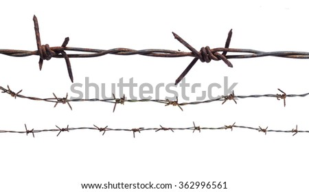 Rusty barbed wire isolated on white background. International Day of Commemoration in Memory of the Victims of the Holocaust Amnesty concept.
