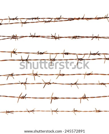 Rusty barbed wire on white background  - stock photo