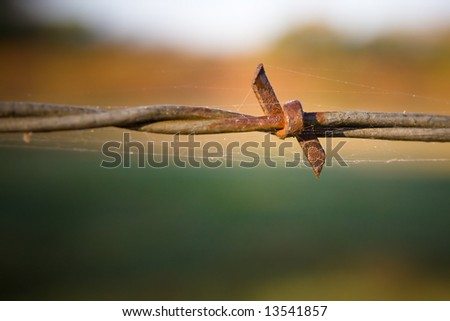 Rusty Barbed Wire with Spider Web and Morning dew - stock photo