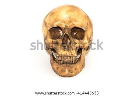 Rusty Human skull - isolated on white background - stock photo