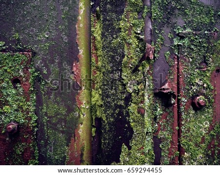 Rust Moss Stock Images Royalty Free Images Amp Vectors