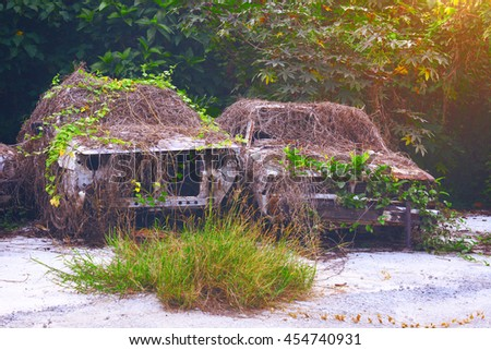 Rusty old cars covered by vines. - stock photo