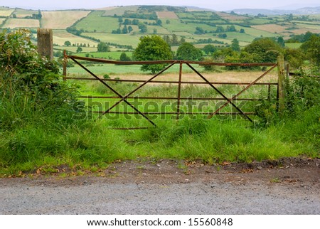Rusty old field gate by a roadside in rural Ireland, with brambles, long grass and wild flowers.  Typical scene  of fields and meadows in the background. - stock photo