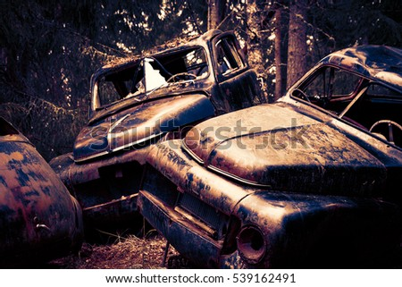 Rusty wrecked cars in a forest