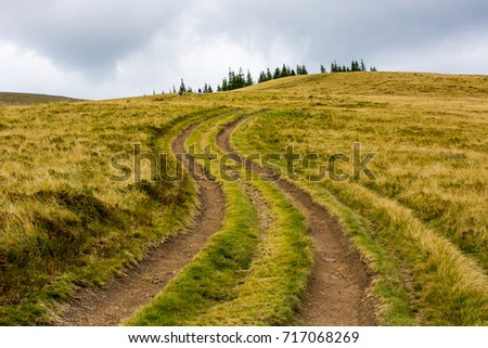 rut road across mountain meadow in Carpathians