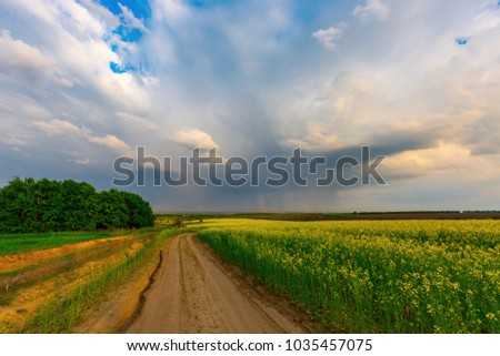 rut road near rape field before storm in steppe
