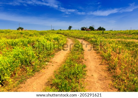 rut rural road among summer meadow - stock photo