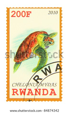 RWANDA - CIRCA 2010: A stamp printed in Rwanda showing Green Sea Turtle, circa 2010 - stock photo