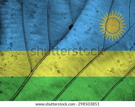 Rwanda flag leaf texture - stock photo