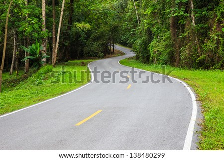 S - curves road into the forest with yellow and white line - stock photo