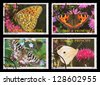 S.TOME E PRINCIPE - CIRCA 1987: A set of postage stamps printed in S.TOME E PRINCIPE shows butterflies, series, circa 1987 - stock photo