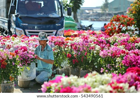 Sa Dec flower planting village, Dong Thap province, Vietnam - January 24, 2016: Local Farmer forearm flower pots for transportation to sell at another location, the days before Vietnamese Tet holiday