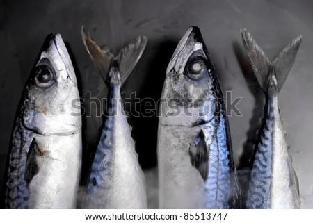 saba fresh - stock photo