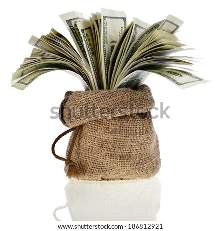 sack bag full money banknotes isolated on a white background - stock photo