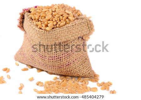 Sack of wheat grains isolated on white background