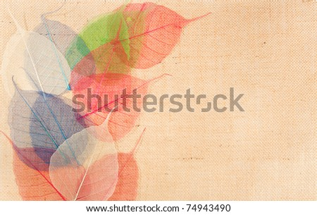 sackcloth with multicolor leaves  decor