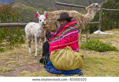 SACRED VALLEY, PERU - MAY 27: Unidentified Peruvian woman in traditional colorful clothes sits with her alpacas in Sacred Valley, Peru on May 27, 2011. The Sacred Valley is close the ancient city of Machu Picchu. - stock photo