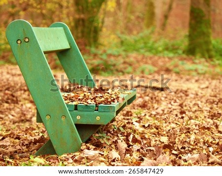 Sad abandoned green bench in park under dry maple and beech leaves.  - stock photo