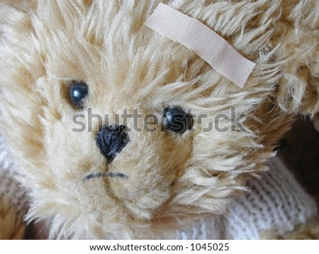 sad bear with bandaid on forehead - stock photo