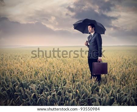 Sad businessman under an umbrella on a wheat field - stock photo