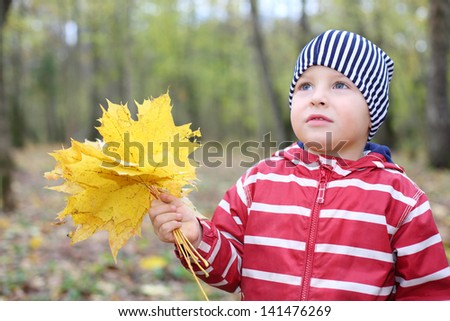 Sad little boy holds yellow maple leaflets looks up. Shallow depth of field. - stock photo
