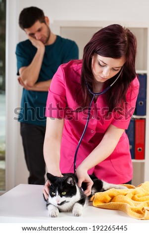 Sad owner looking at his cat's check-up - stock photo