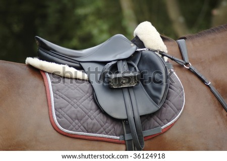 Saddle on a brown horse - stock photo