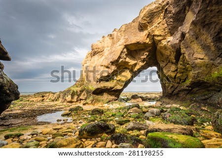 Saddle Rocks at Cullercoats Bay / Saddle Rocks at Cullercoats, Whitley Bay here at low tide showing the seaweed and rocks - stock photo