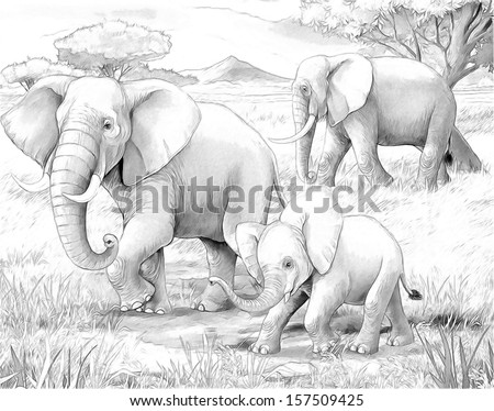 Safari - elephants - coloring page - illustration for the children - stock photo