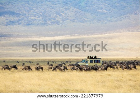 Safari tourists on game drive in Ngorongoro - stock photo