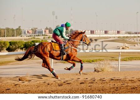 SAFAT, KUWAIT - DECEMBER 8: An unidentified horse jockey warms-up the horse around the Kuwait Equestrian Club horse track December 8, 2011 at Safat, Kuwait. - stock photo