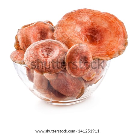 Saffron milk caps (Lactarius deliciosus) in tray isolated on white background