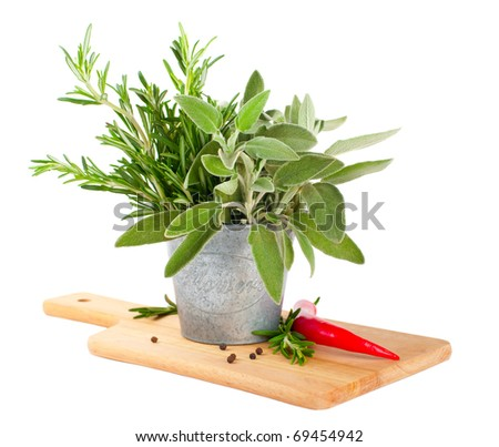 Sage and rosemary in a pail on a white background
