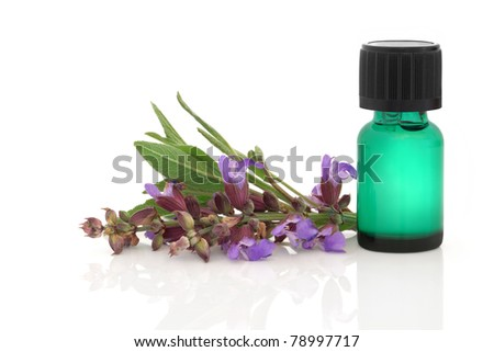 Sage herb flower and leaf sprig with aromatherapy essential oil glass bottle, isolated over white background. - stock photo