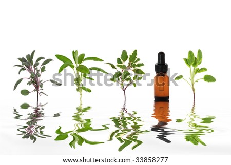 Sage herb leaf specimens with aromatherapy essential oil dropper bottle and  reflection in rippled grey water, over white background. - stock photo