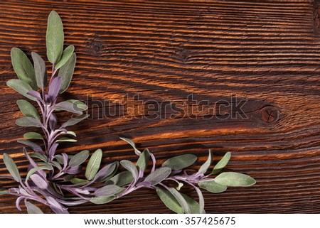 Sage herb on brown wooden rustic background with copy space. Alternative herbal medicine background with copy space. - stock photo