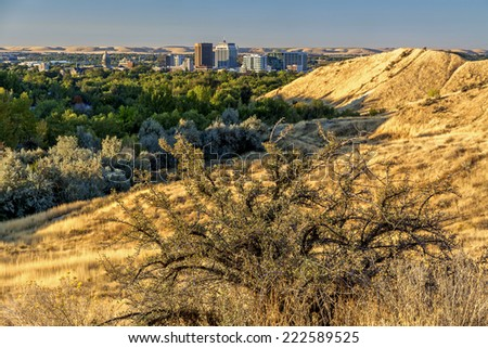 Sagebrush and city of Boise Idaho - stock photo