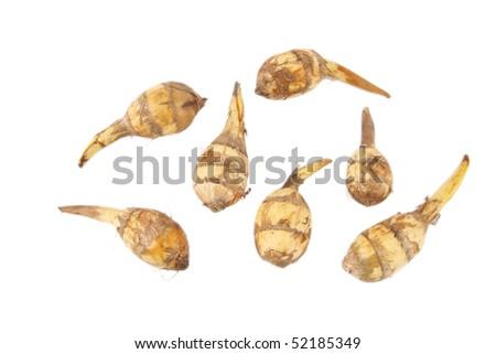 sagittaria - stock photo