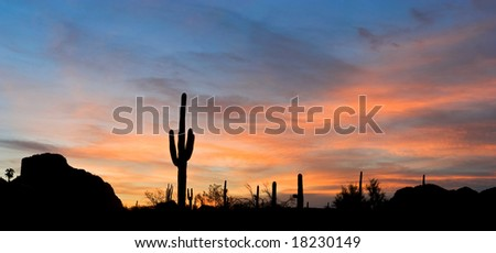 Saguaro silhouette in red sunset lit clouds. - stock photo