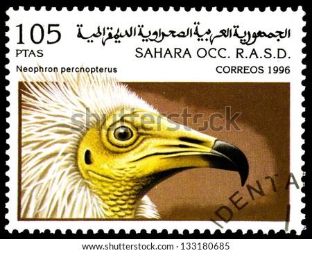 "SAHARA - CIRCA 1996: A stamp printed in Sahrawi Arab Democratic Republic, shows a Neophon percnopterus bird, with the same inscription, from the series ""Birds of prey"", circa 1996 - stock photo"