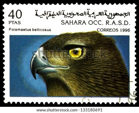 "SAHARA - CIRCA 1996: A stamp printed in Sahrawi Arab Democratic Republic, shows a Polemaetus bellicosus bird, with the same inscription, from the series ""Birds of prey"", circa 1996 - stock photo"