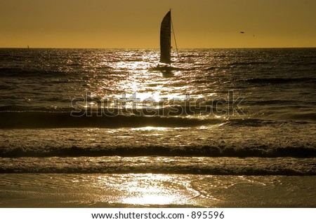 Sailboat during sunset with a silhouette of a pelican, with waves hitting the shore