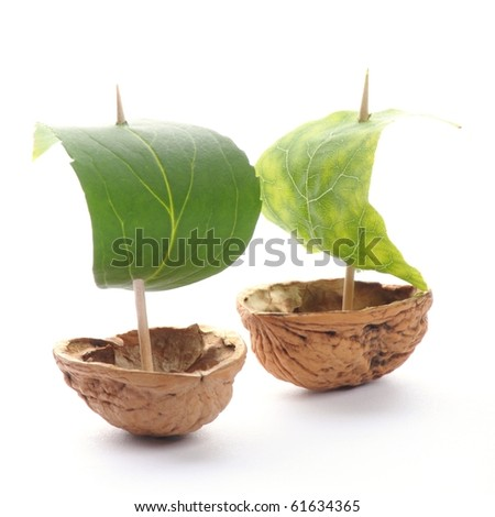 sailboat made of walnut with a leaf as sail isolated on white background - stock photo