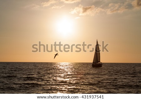 Sailboat Silhouette in the Sunset with Bird Flying Over the Ocean